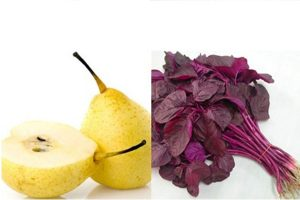 Muốn sống khỏe mỗi ngày, cần phải có sự hiểu rõ về thực phẩm mỗi ngày