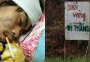 Cười 'té nghế' với những hình ảnh chỉ có ở Việt Nam