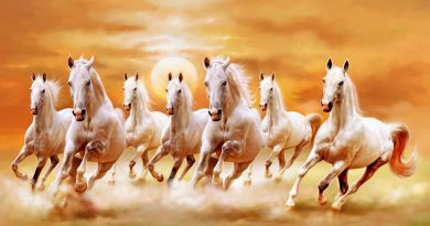 Ngủ mơ thấy con ngựa có điềm báo ý nghĩa gì