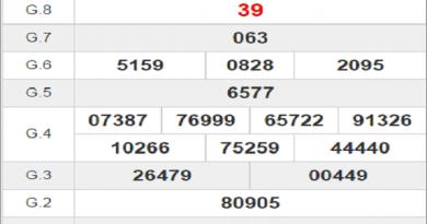 Tổng hợp dự đoán KQXSBT ngày 31/12/2020- xổ số bình thuận